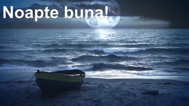 Watch Ocean Sounds and Forest Nature Sound: Meditation, Sleep GIF on Gfycat. Discover more Forest Sounds, Nature Sounds, Ocean Sounds, Relaxation, Sleep Ocean Waves, Sleep Sounds, meditation, relax, relaxing, sleep GIFs on Gfycat