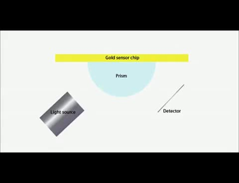 Watch and share Surface Plasmon Resonance Explained GIFs on Gfycat