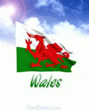 Watch and share Realistic Animated Waving Wales Flag In With Sun And Cloud GIFs on Gfycat