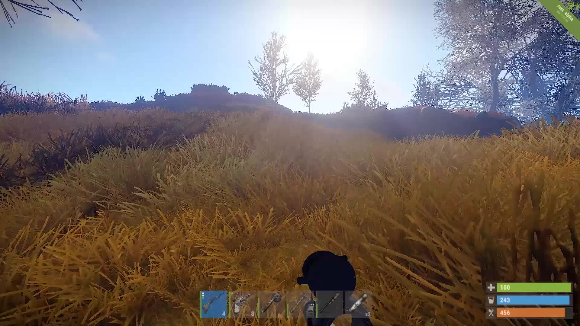 playrust, Can your science explain that? GIFs