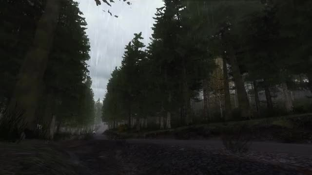 Watch Dirt Rally 2019.02.19 - 21.22.06.05 GIF by Cpt. Sourcebird (@cptsourcebird) on Gfycat. Discover more dirtrally GIFs on Gfycat