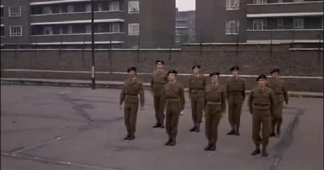 army, army GIFs