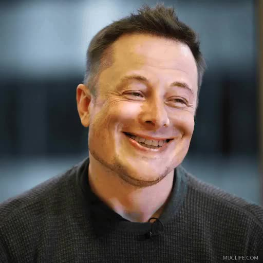 Watch This unsettling Elon Musk gif GIF on Gfycat. Discover more related GIFs on Gfycat