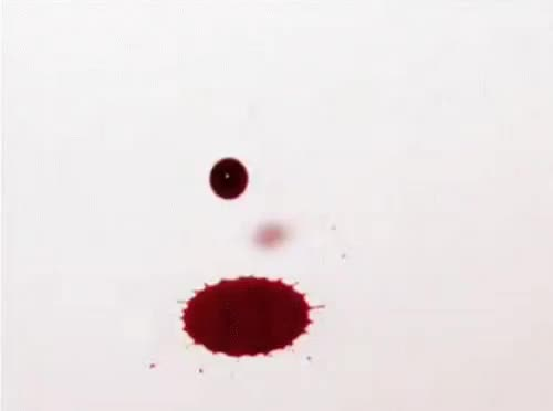 Watch and share Blood Drop GIFs on Gfycat