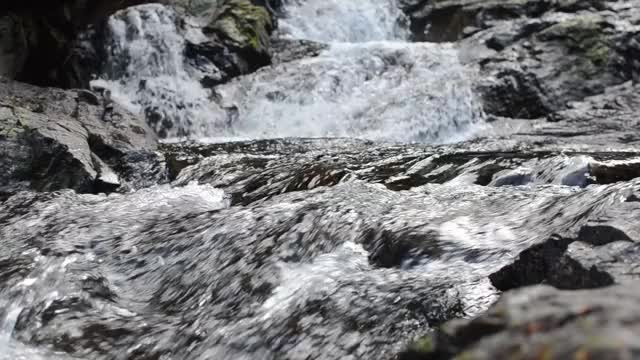 Watch and share Naturegifs GIFs by opierson on Gfycat