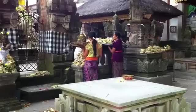 Watch Balinese Hindi Offerings. Yea, this happens EVERYDAY. GIF on Gfycat. Discover more related GIFs on Gfycat