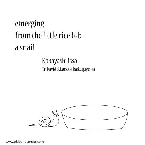 Watch and share Emerging From The Rice Tub A Snail Haiku By Kobayashi Issa (animated Gif) GIFs on Gfycat