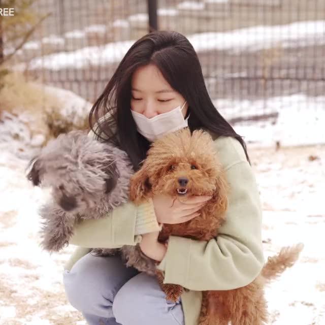 Watch and share [(여자)아이들] 너무 귀여워 '화(火花)'가 남🔥 (feat.슈화) - Shuhua Doggos GIFs by zzz on Gfycat