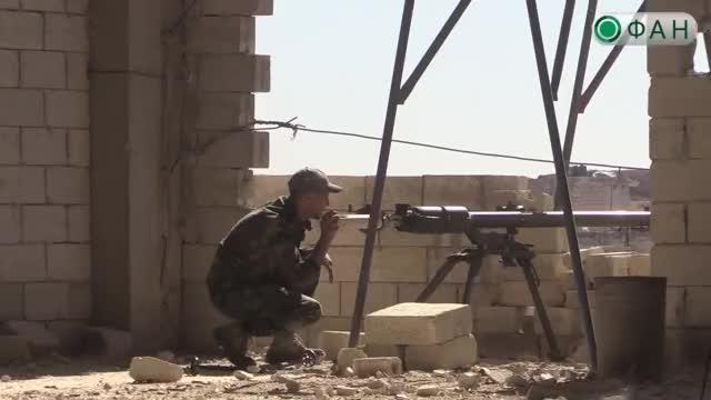 Watch and share Алеппо GIFs and Сирия GIFs on Gfycat