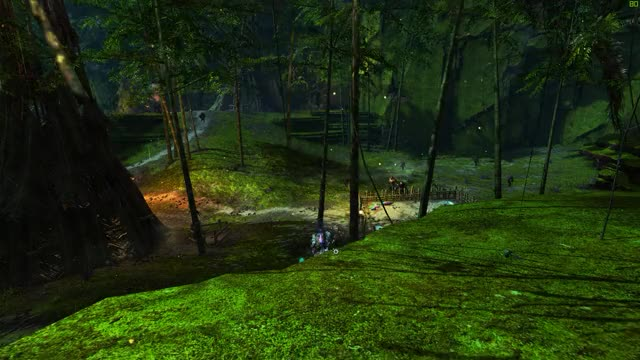 Watch and share Gw2 GIFs by Randomm User on Gfycat
