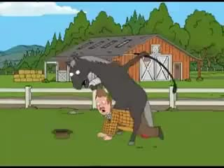 Watch and share Family Guy Horse GIFs on Gfycat