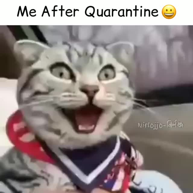 me after quarantine