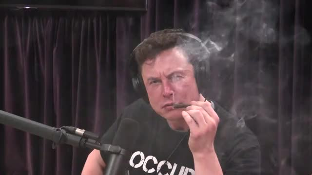 Watch Elon J GIF on Gfycat. Discover more celebs, elon musk GIFs on Gfycat