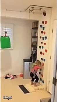 Watch and share TAil GIFs on Gfycat