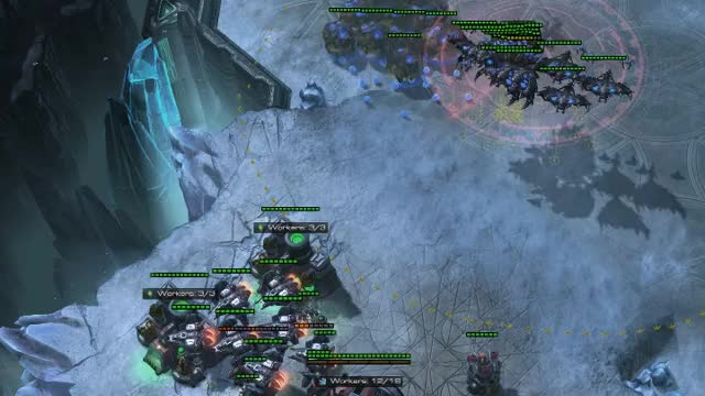 Watch and share The Final Swarm GIFs by TheSkunk on Gfycat