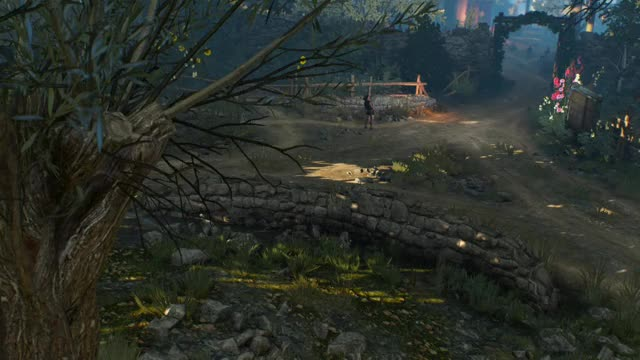 Watch Witcher GIF by Gamer DVR (@xboxdvr) on Gfycat. Discover more TheWitcher3WildHunt, Unwitting2001MC, xbox, xbox dvr, xbox one GIFs on Gfycat