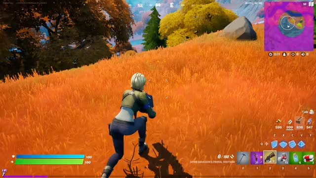 Watch and share The Biggest Victory Royale Ever GIFs by blameenjay on Gfycat