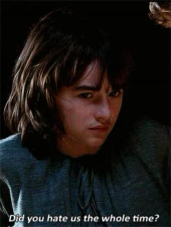 bran stark, hate, haters gonna hate, Bran Stark Did You Hate Us GIFs