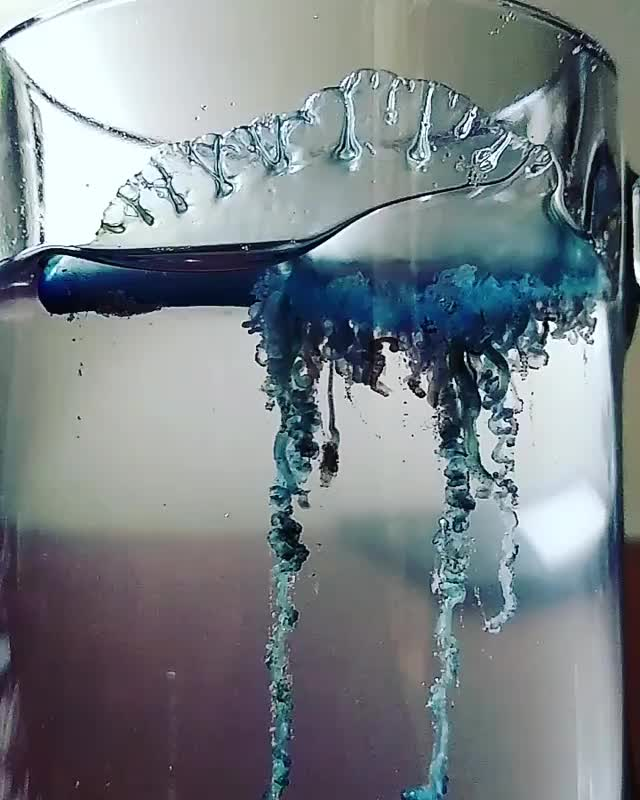 jellyfish in a glass GIFs