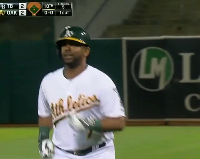 Watch and share Possum At The A's Game GIFs on Gfycat