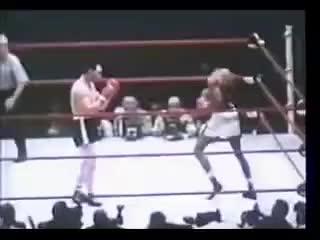 Watch Robinson Fullmer II KO GIF on Gfycat. Discover more Sugar Ray Robinson Gene Fullmer GIFs on Gfycat
