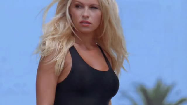 Watch this pam anderson GIF by shapesus (@politoadmoves) on Gfycat. Discover more baywatch, celebs, pam anderson, pamela anderson GIFs on Gfycat