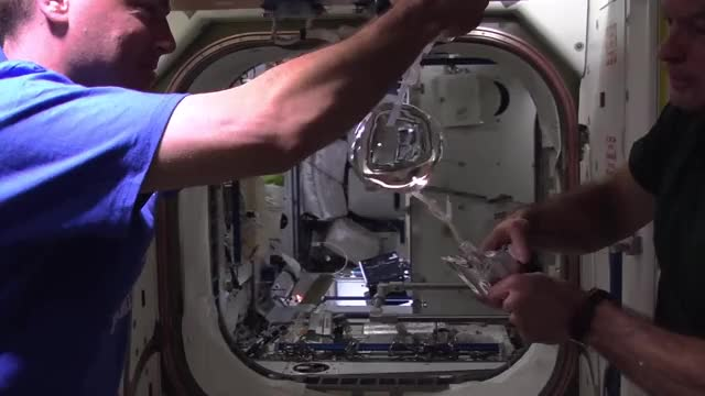 Watch Space Station Astronauts Grow a Water Bubble in Space GIF on Gfycat. Discover more Astronaut, NASA, microgravity, space GIFs on Gfycat