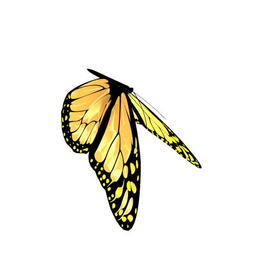 Watch on change it butterflies colors GIF on Gfycat. Discover more butterflies, change, colors, it, on GIFs on Gfycat