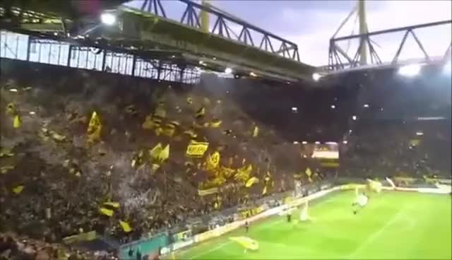 Watch this trending GIF on Gfycat. Discover more BVB, Borussia Dortmund, Echte Liebe GIFs on Gfycat