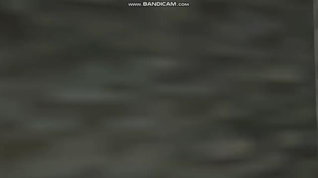 Watch and share Half Cab Nosepick Wall Scrape GIFs on Gfycat