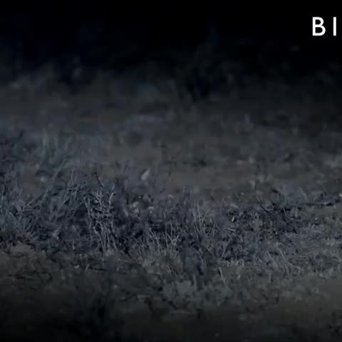Watch and share Doc 2019-05-05 14-30-14 GIFs on Gfycat