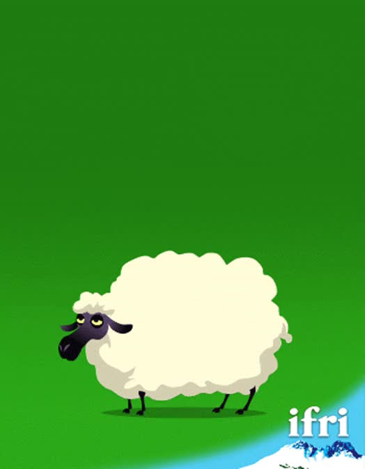 Watch and share Ifri-EMN-sheep GIFs on Gfycat
