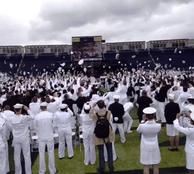 graduate, graduation, happy graduation, 🎓 graduation cap GIFs