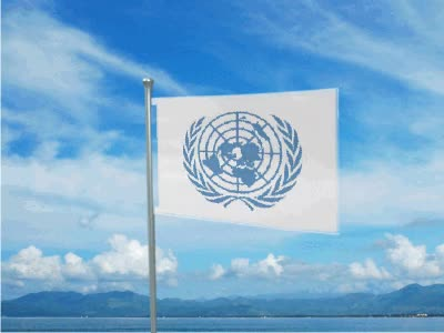Watch and share Club Penguin United Nations GIFs on Gfycat