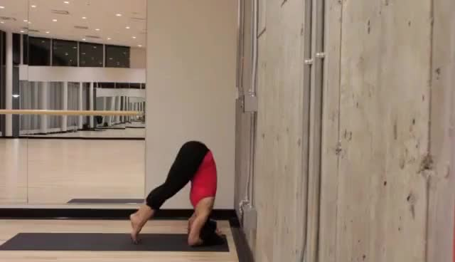 Watch Yoga GIF on Gfycat. Discover more Yoga GIFs on Gfycat