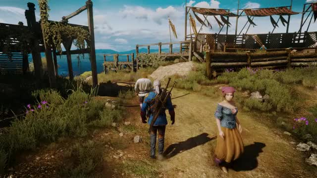 Watch and share Witcher GIFs by xxzeemannxx on Gfycat