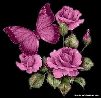 Fondos De Flores Y Rosas Rojas Con Movimiento Gif Find Make