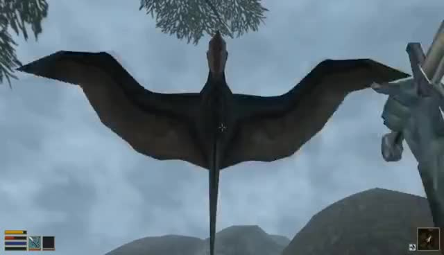 Morrowind vs Skyrim - More Is Less GIFs