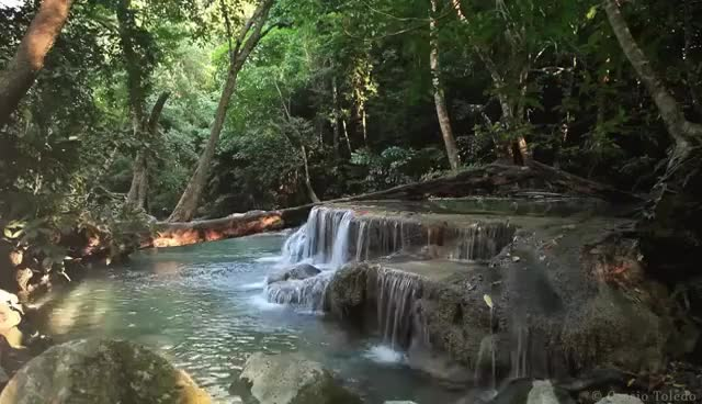 Watch Rainforest Sounds - Water Sound Nature Meditation GIF on Gfycat. Discover more related GIFs on Gfycat