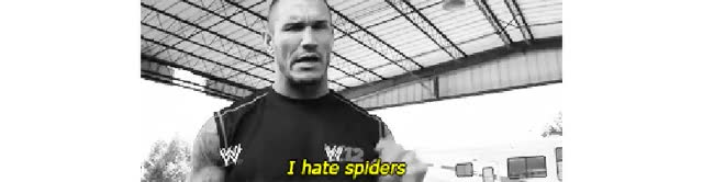 Watch this GIF on Gfycat. Discover more randy orton GIFs on Gfycat