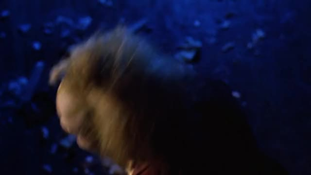Watch Beetlejuice. GIF on Gfycat. Discover more related GIFs on Gfycat