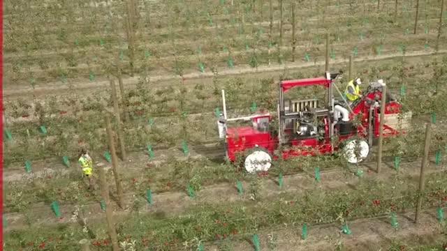 Watch and share Abundant Robotics GIFs and Robotic Harvester GIFs on Gfycat