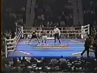 Watch Roy Jones Jr vs Thomas Tate 26th of 60+ GIF on Gfycat. Discover more America, Boxing, Championship, IBF, Jr., Middleweight, Roy Jones, Sports United, States GIFs on Gfycat