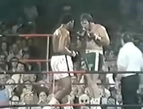 Watch Ali finishes Quarry GIF on Gfycat. Discover more Jerry Quarry, Muhammad Ali GIFs on Gfycat