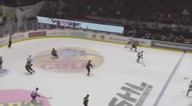 Watch and share Pettersson Shake Off + Vision GIFs on Gfycat