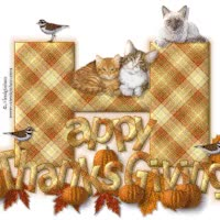 Watch and share Happy Thanksgiving Gif GIFs on Gfycat
