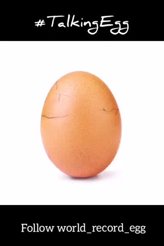 Watch and share World Record Egg GIFs and Talkingegg GIFs by Muneeb Dilshad on Gfycat