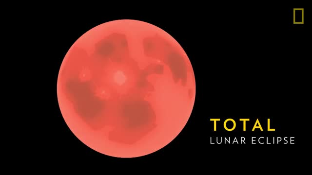 Watch Lunar Eclipse 101 | National Geographic GIF on Gfycat. Discover more animals, discover, explore, nat geo, natgeo, national geographic, nature, science, survival, wildlife GIFs on Gfycat