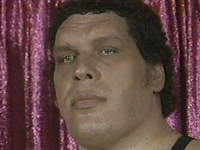 André The Giant,  GIFs