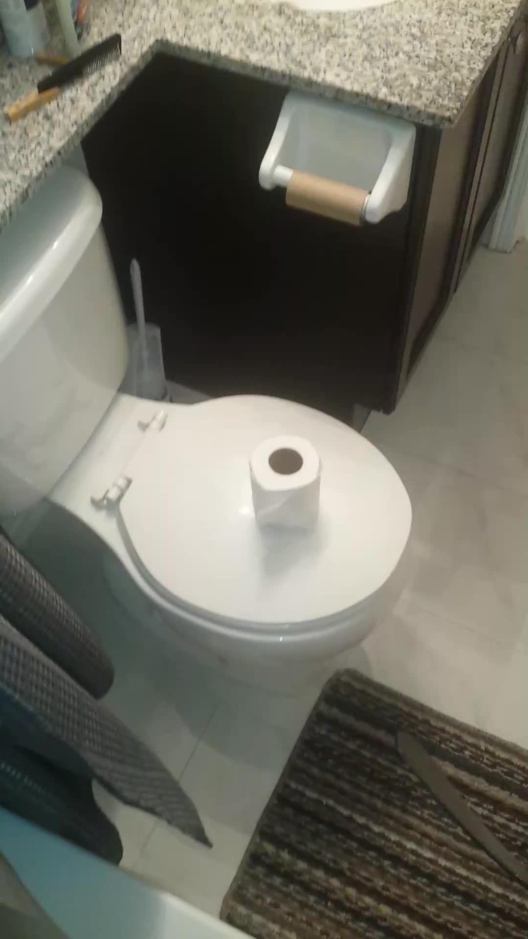 bakanewsjp, gifs, Replace your toilet paper the Canadian way GIFs